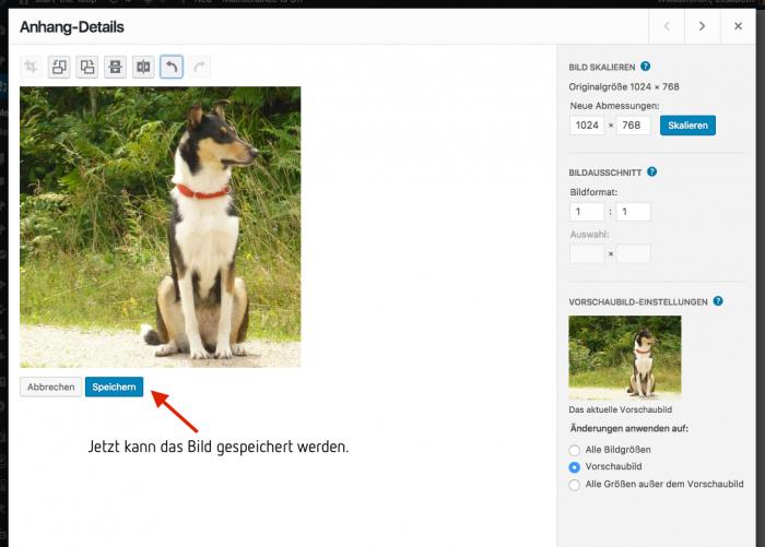 WordPress Medien Anhang-Details nach Ausschneiden