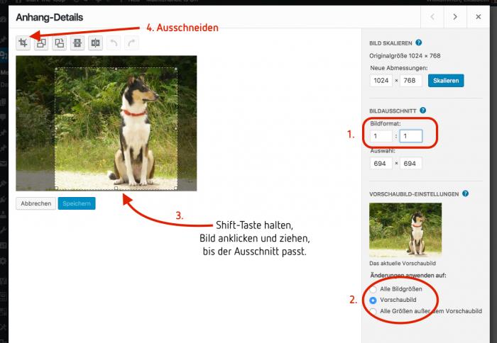 WordPress Medien Anhang-Seite Bild zuschneiden